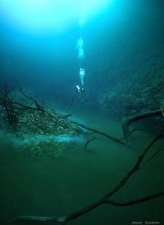 Cenote Angelita, Mexico  Underwater_River_in_Mexico_4