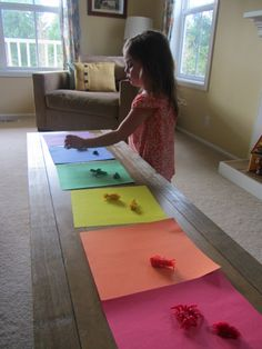 Indoor Bug Hunt {counting, sorting and matching}