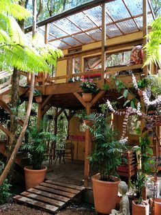 Peaceful Rainforest Treehouse Retreat - Treehouses for Rent in Volcano, Hawaii, United States Wooden Cottage, Wooden Garden, Building A Treehouse, Building A House, House Near Beach, Jungle Resort, Bali Garden, Jungle House, Rooftop Design