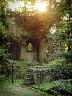 This is a shot from an old cemetery in Prague, but also looks like my dream backyard haha