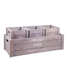 Take a look at this Gray 'Orchard' Box & Tray Set by Home Essentials and Beyond on #zulily today!