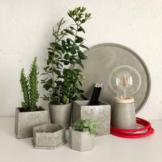 Hand made cement objects Natural Materials, Cement, Objects, Vase, Pure Products, Plants, Handmade, Design, Home Decor