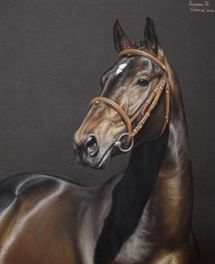 Caramsin - horse pastel drawing by Julyart on deviantART