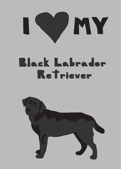 I <3 my black labrador retriever on the couch next to me ... and of course my yellow labs in heaven & in my heart