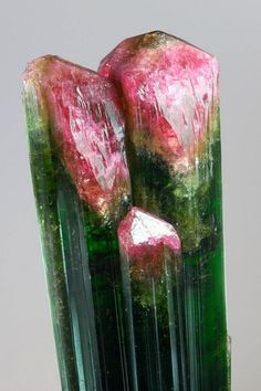 Elbaite Tourmaline / Mineral Friends <3