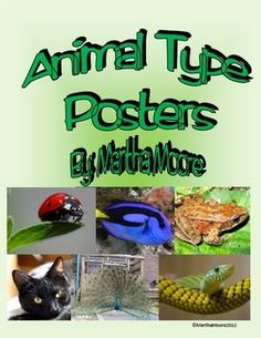 These posters list the characteristics of the 6 types of animals and display pictures of some examples of each type. There is a poster for each of the following animal classifications: mammal, bird, reptile, amphibian, fish, and insect. Posters are available with a white or green background.
