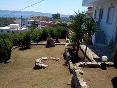Hortokoptiki.gr lavrio Patio, Outdoor Decor, Plants, Home Decor, Decoration Home, Room Decor, Plant, Home Interior Design, Planets