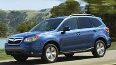 Introducing the all-new 2014 Subaru Forester. What color Subaru will be in their garden? Turkey Hunting, Duck Hunting, Subaru Cars, Hunting Equipment, Subaru Forester, Community, America, Usa, Board
