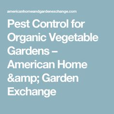 Pest Control for Organic Vegetable Gardens – American Home & Garden Exchange