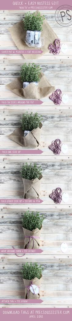 Herbs like oregano, basil and chives are always our best seller at our school's plant sale fundraiser Craft Gifts, Diy Gifts, Deco Floral, Cute Diys, Hostess Gifts, Housewarming Gifts, Creative Gifts, Homemade Gifts, Gift Baskets