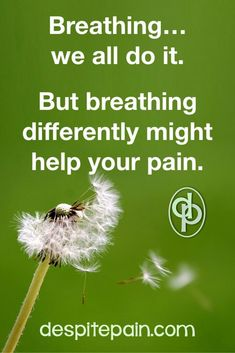 Breathing a Better Way Could Help Your Pain - Despite Pain #breathingexercises #breathe #chronicpain Chronic Fatigue, Chronic Pain, Fibromyalgia, Chronic Illness, Medical Help, Medical Advice, Relaxation Response, Diaphragmatic Breathing
