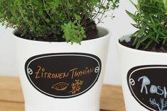 Gärtnern mit kleinen Kindern - Tipps und Tricks ⋆ Miss Broccoli Broccoli, Mugs, Tableware, Planting For Kids, Sprouting Seeds, Harvest, Tips And Tricks, Dinnerware, Tumblers