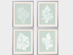 Set of four coral silhouettes in white. The background is a a warm sea foam green with a gray base with a hint blue.   $46