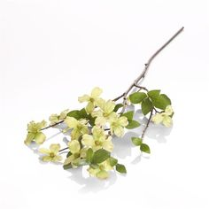 Gnw fl gy42 72 high quality plastic artificial gypsophila flowers gnw fl gy42 72 high quality plastic artificial gypsophila flowers for wedding decoration buy artificial gypsophila flowersplastic artificial gypsophila mightylinksfo Image collections