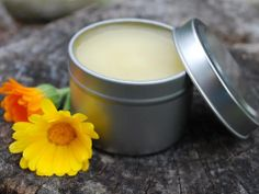 Homemade Herbal Decongestant Salve - From Homesteading Self Sufficiency Survival
