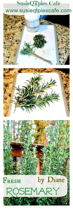 Easy step by step on using your Rosemary for cooking #herbs