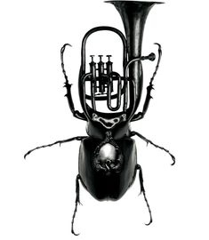 Exotic Bug Instruments Redefine Design Norms - My Modern Metropolis