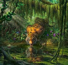 Drawing Animals MARK FREDRICKSON - TIGER - 550 PIECE PUZZLE - This 550 piece puzzle by artist Mark Frederickson depicts a tiger stopping for a drink of water at a jungle stream. Purple flowers surround the water and a snake looks down from above. Tiger Drawing, Tiger Art, Art Tigre, Wildlife Art, Animal Drawings, Drawing Animals, Garden Art, Fine Art America, Fantasy Art