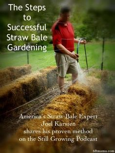 Organic Gardening The Steps to Successful Straw Bale Gardening Episode Hay Bale Gardening, Strawbale Gardening, Container Gardening, Gardening For Dummies, Organic Gardening Tips, Vegetable Gardening, Flower Gardening, Straw Bales, Hay Bales