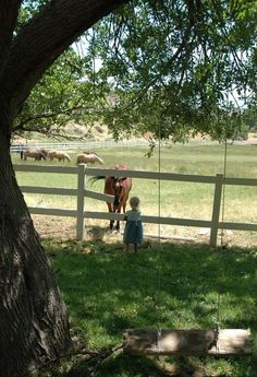 Horse & Little Girl At The Fence