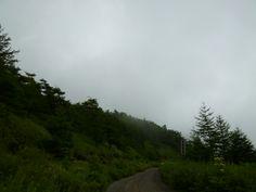 "Agosto, ""Takaminekogen""(Altopiano),  Komoro Nagano Japan"