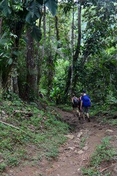 Disfruta uno de los mejores trek del mundo! reservas@magictourcolombia.com #wetakeyouthere