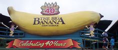 Big Banana in Coffs Harbour Queensland Australia Australia's Big Things – What And Where Are They