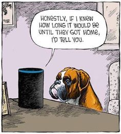 Mystery Fanfare: Cartoon of the Day: Alexa Cute Funny Animals, Funny Dogs, Blockchain, I Love Dogs, Puppy Love, Mutt Dog, Dog Organization, Dog Grooming Shop, Boxer Love