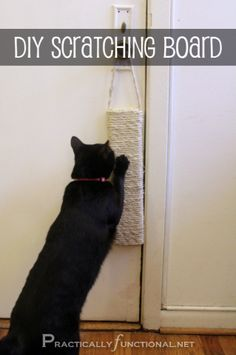 Make your own hanging sisal scratching post with sisal rope, a wooden board, and wood glue!