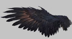52 ideas bird wings drawing crows ravens for 2019 Raven Wings, Bird Wings, Demon Wings, Raven Bird, Corvo Tattoo, Art Sketches, Art Drawings, Eagle Wings, Ange Demon