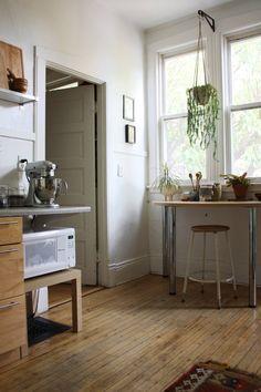 hanging plants in kitchen/bathroom etc