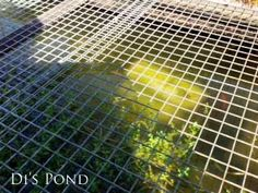 How to Clean Gross Murky Pond Water Fast—without Chemicals How to Clean Gross Murky Pond Water Fast—without ChemicalsThis post contains affiliate links.Is your garden pond water murky like pea soup i