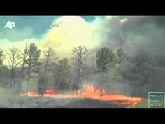 Video shot by the Texas Parks and Wildlife Department shows how quickly a wildfire is moving through Bastrop State Park. Bastrop State Park, Bastrop Texas, Bastrop Fire, Wildland Firefighter, Volunteer Firefighter, Texas Parks, State Parks, Fire Trucks, Northern California
