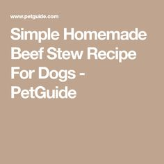 Simple Homemade Beef Stew Recipe For Dogs - PetGuide