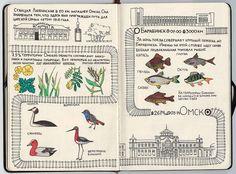 Рисованный Транссиб Кати Гущиной: от Москвы до Владивостока: periskop