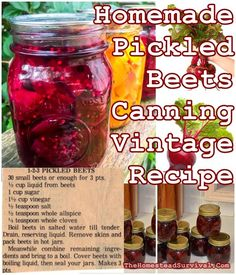 This Homemade Pickled Beets Canning Vintage Recipe is an old fashioned delicious creative way to preserve beets for those long winter months ahead. Canned Pickled Beets, Canning Beets, Canning Pickles, Canning Vegetables, Best Pickled Beets Recipe, Canned Beets Recipe, Refrigerator Pickled Beets, Freezing Vegetables, Refrigerator Pickles
