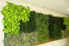 Vertiflower Professional - Pflanzenwand Modul für die Wandbegrünung.  Die Vertiflower® Pflanzmodule sind beliebig kombinierbar. Für 16 Pflanzen / Modul. Maße: ca. 47,5 x 50,0 x 12,5 cm. Bohrungen zum Einbau von Bewässerungsleitungen sind vorgesehen. Vertical Gardens, Aquarium, Indoor, Lawn And Garden, Goldfish Bowl, Interior, Aquarium Fish Tank, Living Walls, Aquarius