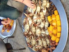 Now that's a crab bake