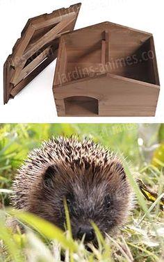 t l charger plan cabane h risson hedgehogs pinterest garden hedgehog house et hedgehog. Black Bedroom Furniture Sets. Home Design Ideas