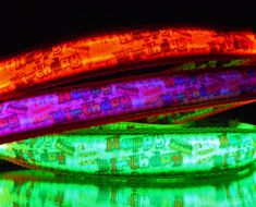 Birthday party dog collar lights up in dark w/ LED's - green by BellaTAZ