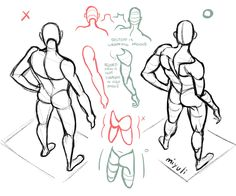 """Anatomy Drawing Tutorial - """"Our first feature artist/references for Body Reference Drawing, Anatomy Reference, Drawing Skills, Art Reference Poses, Drawing Techniques, Drawing Tutorials, Art Tutorials, Drawing Sketches, Art Drawings"""