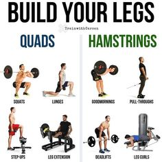 Build Massive Strong Legs & Glutes With This Amazing Workout And Tips The legs are often not a major priority in a lot of bros training programs. If anything, there is usually just a measly leg day thrown in that consists of squats and a few leg machines. Leg Workouts For Men, Leg And Glute Workout, Hamstring Workout, Gym Workouts, At Home Workouts, Workout Men, Workout Tips, Workout Plans, Workout Routines