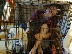 Showing my rescue pups that the crate is a place of safety and treats! #Cute