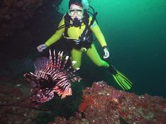 Lion Fish at Rashid's Drift / Diving with Extra Divers Musandam (Oman 2015)