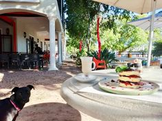 The Award-winning Koffi Terapi Coffee Shop serves breakfast, lunch, drinks and coffee.  Koffi Terapi was awarded in 2018 on the 13th Annual RASA Rosetta Awards the price for the best Coffee Shop in South Africa.  (The Rosetta Award is an award given to Restaurants that strive for Excellence in the Restaurant Industry. It is recognition of the highest Honors for Service Excellence.)  25 Church street Durbanville  Tel - 021 975 6011 #KoffiTerapi #bestcoffeeshop #coffeeshop… Best Hospitals, Best Coffee Shop, Table Mountain, Cape Town, South Africa, Trip Advisor, Restaurants, Awards, Lunch