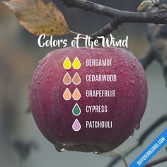 Colors of the Wind - Essential Oil Diffuser Blend #MassageOils #PatchouliEssentialOilblends