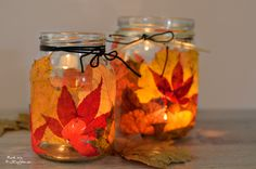 de // Autumn Lights DIY: From autumn leaves and mason jars in the … - All For Decoration Halloween Wine Bottles, Wine Bottle Crafts, Fall Crafts, Diy And Crafts, Apartment Lighting, Autumn Lights, The Conjuring, Autumn Leaves, Mason Jars