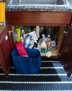 Before & After: How I Organized My Disastrous Under-the-Sink Area — Kitchen Organization
