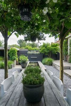 Stacey saved to cashAnnemieke toont haar tuin: modern, minimalistisch . Garden Types, Diy Garden, Garden Cottage, Green Garden, Shade Garden, Café Exterior, Design Exterior, Back Gardens, Small Gardens