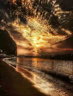 The colours , golden wonder. Exquisite ❤️